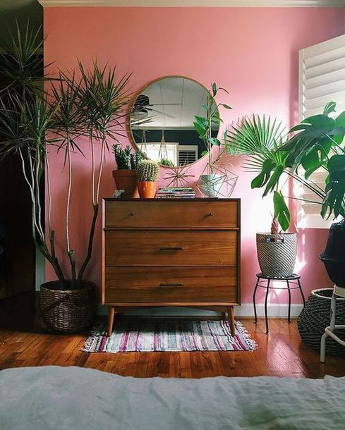 Cool Quirky Summer Time Vibes Bright Pink Walls With Bedroom Wooden Draws And DIY Plant Stands Interior Style