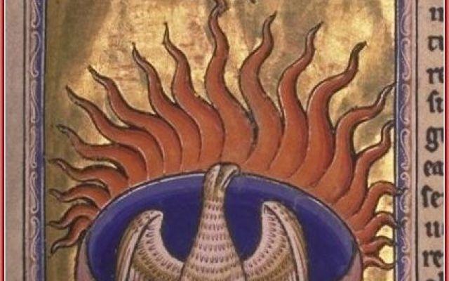 La Fenice, o Phoenix, il favoloso uccello La Fenice, o Phoenix, è un favoloso uccello, dotato di longevità e caratterizzato dal suo potere di rinascere dalle proprie ceneri dopo la morte. Esso simboleggia così i cicli di morte e risurrezione #araba #esiodo #favolosouccello #fenice