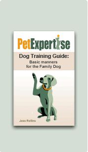 """Training Your Dog to """"Drop It"""" and """"Leave It"""". Can't wait to practice this with Izzy girl since she's not the best at either!"""