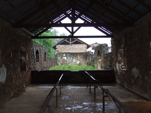 Ruins at Devil's Island---hospital and cell blocks