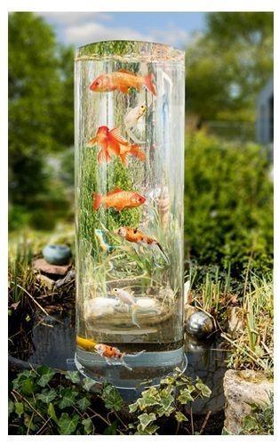 Die besten 17 ideen zu fischteiche auf pinterest teiche for Aquarium fische im teich