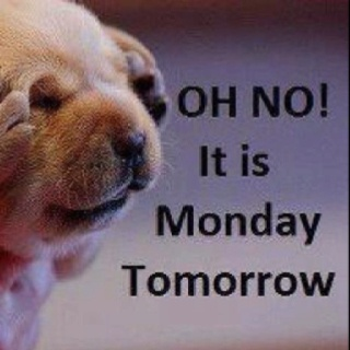 Oh No, it is Monday tomorrow.  Sayings  Pinterest  Mondays and It is