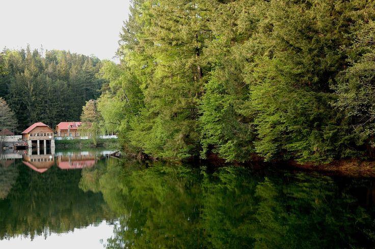 ANINA: Lacul Bohui