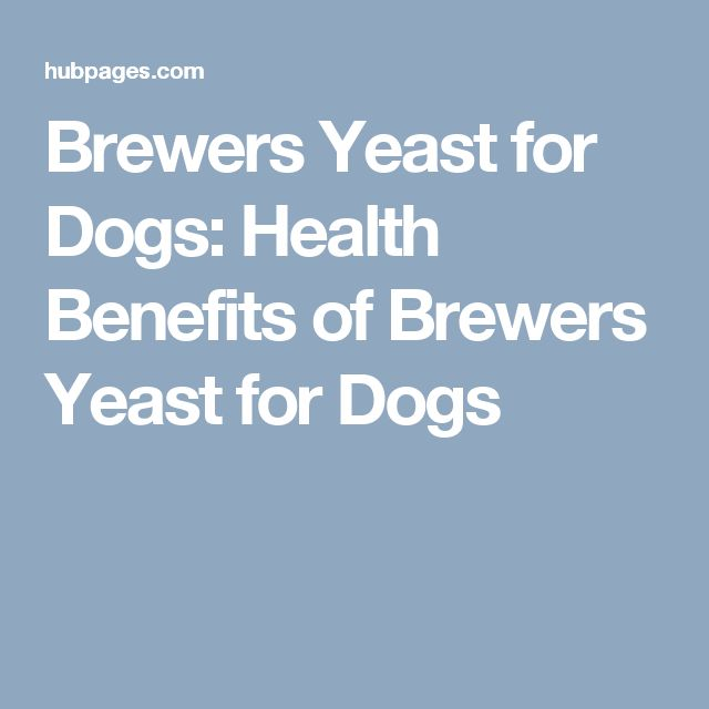Brewers Yeast for Dogs: Health Benefits of Brewers Yeast for Dogs
