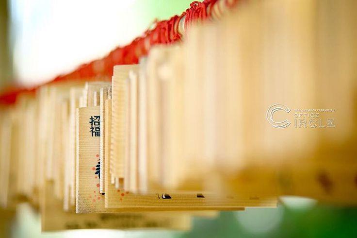 「ちらり招福」 * * 大阪堀越神社での神前式撮影をさせて頂きました* 神社での厳かな雰囲気、 写真を撮るカメラマンもキリッとします。 緑の多い神社では、和装でのロケーション撮影も素敵にのこせますね* * * #結婚式 #和装前撮り #ロケーションフォト #ウエディングフォト #フォトグラファー #フォトウェディング #wedding #weddingphotography #japan #2016秋婚 #2016冬婚 #2017春婚 #関西花嫁 #大阪花嫁 #神社 #和婚 #プレ花嫁 #officecircle #osaka #kyoto #kimono #絵馬 #結婚式準備 #白無垢 #前撮り