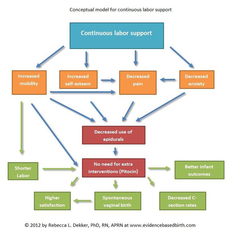 Doula conceptual model