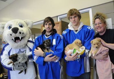 Buffalo Sabres: Sudbury Wolves mascot Howler, players Eric O'Dell and Marcus Foligno, and Sudbury SPCA Manager Peggy Byers hold three week old puppies