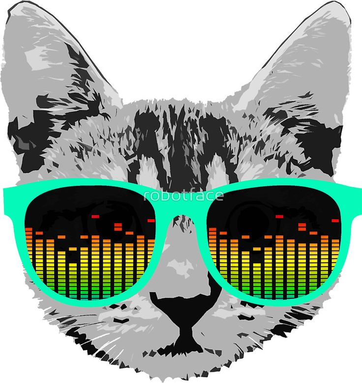 Funny Music Cat with Glasses