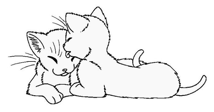 Cats Coloring Pages Printable Cat Coloring Page Warrior Cats Fan Art Cat Template