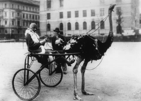 Josephine Baker outside Hotel Adlon, Berlin 1926                                                                                                                                                                                 Mehr