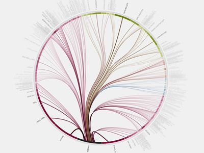 Visualizing information flow in science: The first image represents a radial visualization based on hierarchical edge bundling, which gives an overview of the whole citation network...