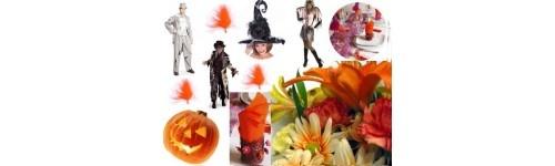 Déguisement Halloween pour toute la famille, Déguisement vampire adulte et enfant, Déguisement sorcière, Déguisement zombie...