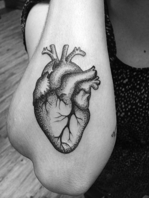 Anatomical heart done on one of the strongest points of the body. This is my second tattoo.  Done by Brian at Ikonic Ink in State College, Pennsylvania.