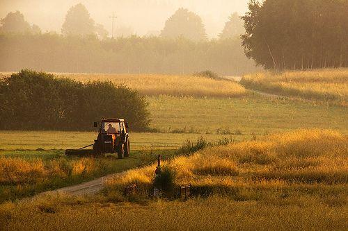 Rural Poland