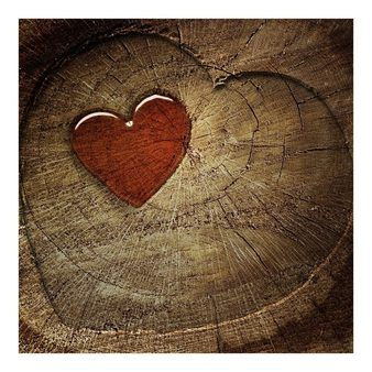 Bilderwelten Vliestapete Premium Quadrat »Natural Love«