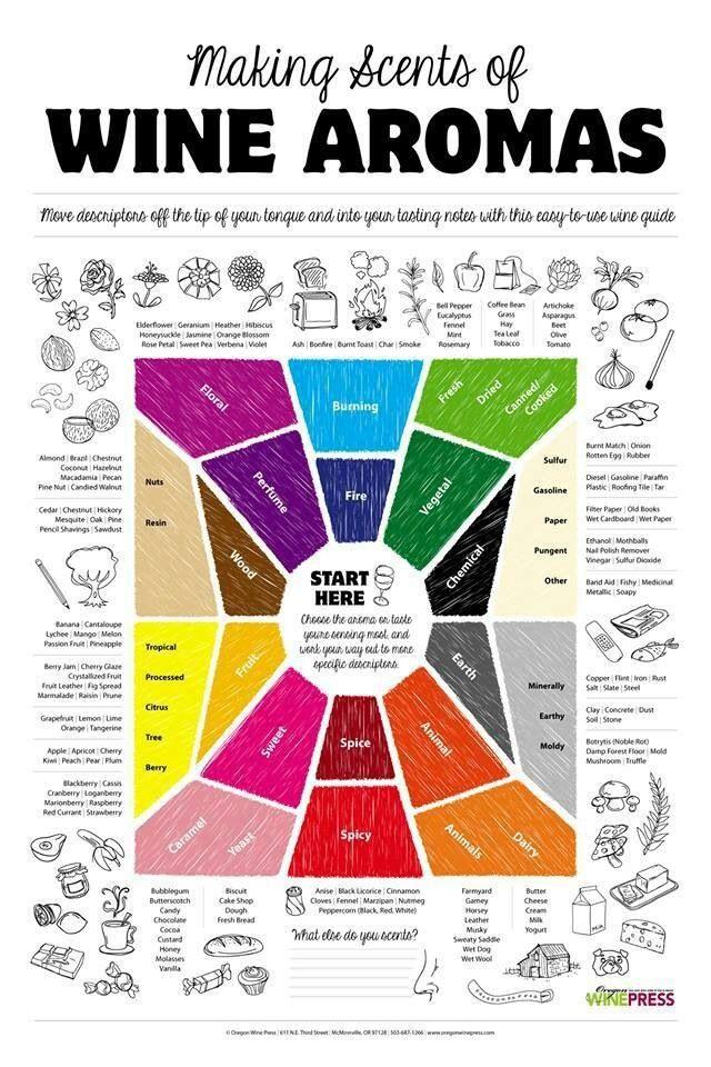 Infografia #aromas #vino (pineado por @OrgulloWine)