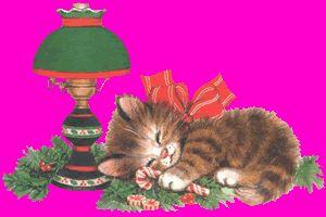 chat qui dort à côté d'une lampe de chevet