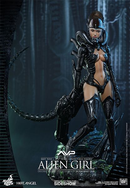 Alien VS Predator Alien Girl Sixth Scale Figure by Hot Toys | Sideshow Collectibles