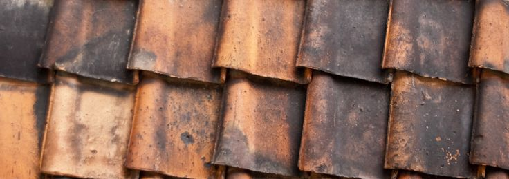 A weak roof may have hidden damages that can cause water leaks. Professional roofers can handle this type of problem. http://roofingmaster.ca/blog/facts-about-roof-water-leaks-that-you-will-want-to-know/