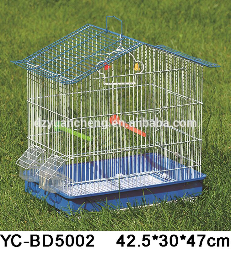 Best 25+ Bird cages for sale ideas on Pinterest ...