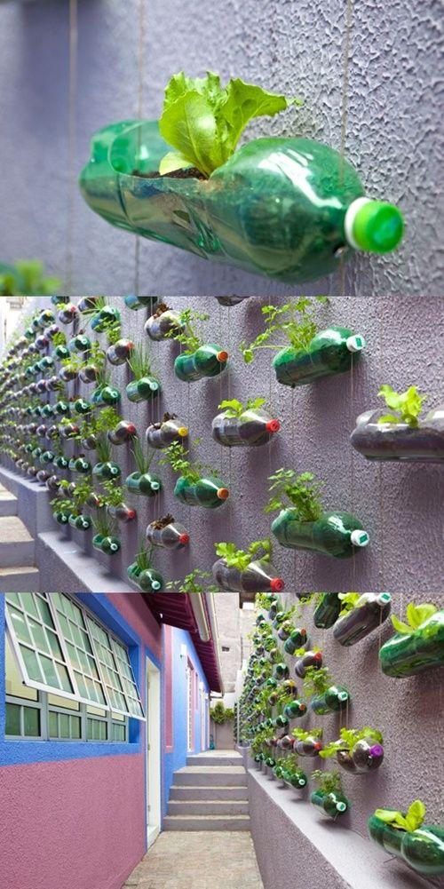 horta suspensa 2-vert
