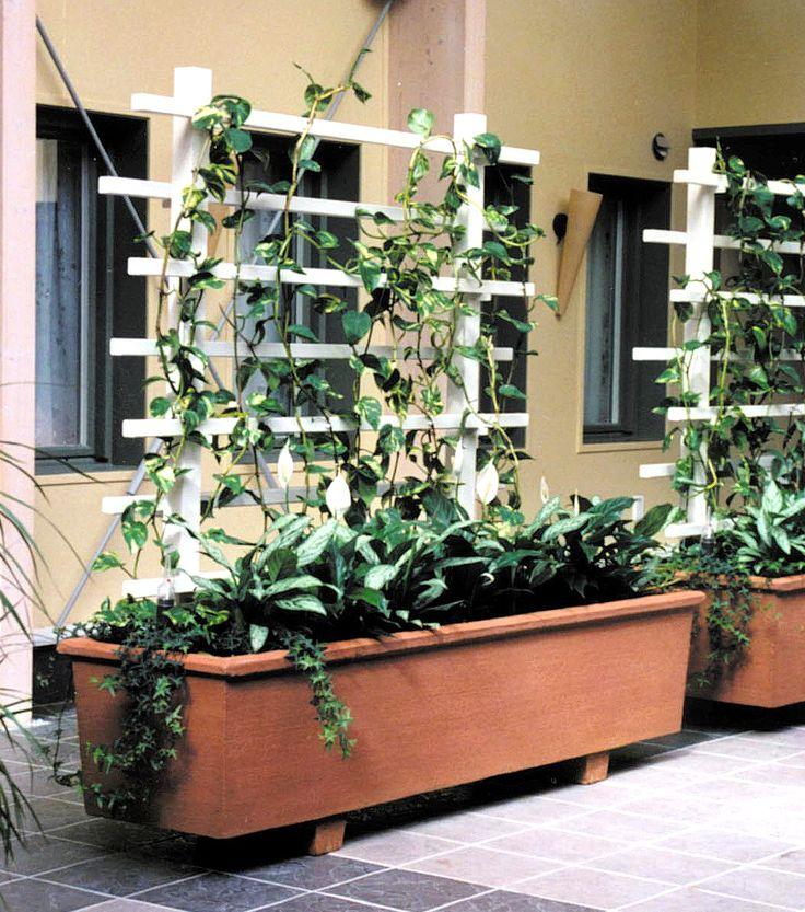 Generös, flyttbar planteringslåda förpermanenta eller tillfälliga planteringar.Planteringslådan finns i två färger –terrakotta eller infärgad grå, med borstadyta. Lådan kan kompletteras med en spaljé i täcklaserad furu. Mona bevattningstank finns som tillbehör.
