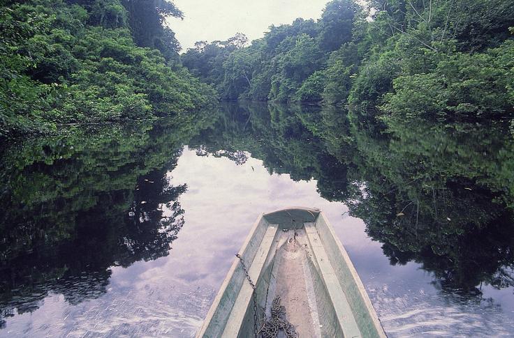 Salvaguardar: pronósticos y control de escenarios hidrológicos