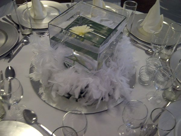 18cm square vase with a floating gerbera and white feather boa www.iceevents.co.za