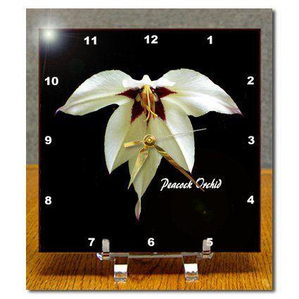 dc_6649_1 SmudgeArt Flower Art Designs - Peacock Orchid - Photography Flowers - Desk Clocks - 6x6 Desk Clock 3dRose http://www.amazon.com/dp/B0046DF8U4/ref=cm_sw_r_pi_dp_aXQbwb0GN8H0H