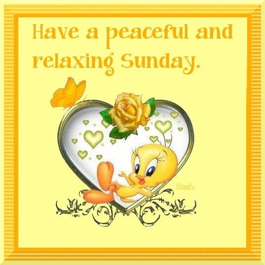 Good Morning My Love Have A Blessed Sunday : Have a peaceful sunday good morning quotes and poems