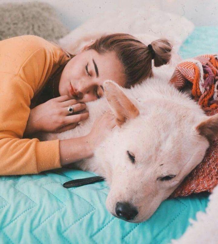 mi nombre es -----jonhson tengo 16 años y vivo en Argentina pero por … #detodo # De Todo # amreading # books # wattpad   Tumblr perro, Mascotas, Fotos de mascotas