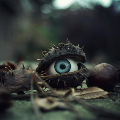 Put fake eyeballs in random places. A fun and easy Halloween decoration that guests will find unexpectedly. BOO!