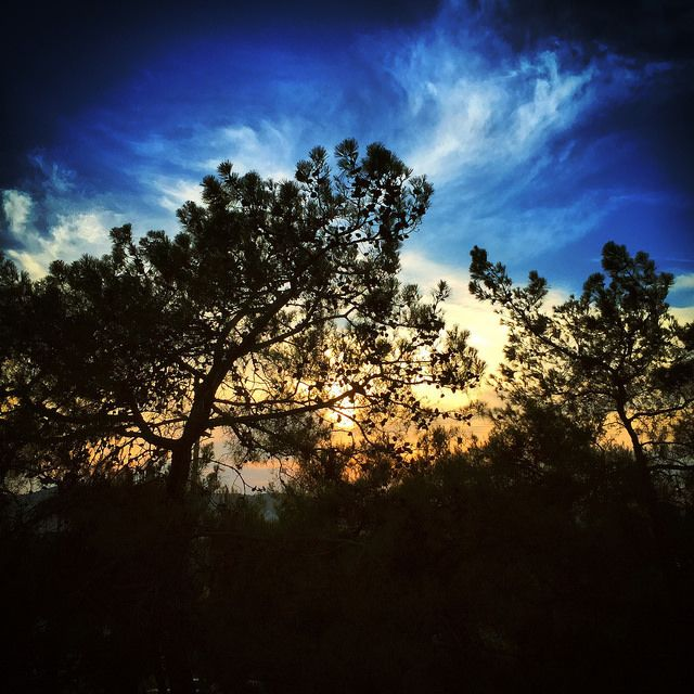 #trees #sky #clouds #sunset #iPhone | by Tryfon Tobias Pliatsikouris