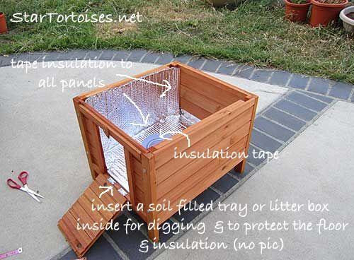 Best 20 Tortoise Enclosure Ideas On Pinterest Tortoise