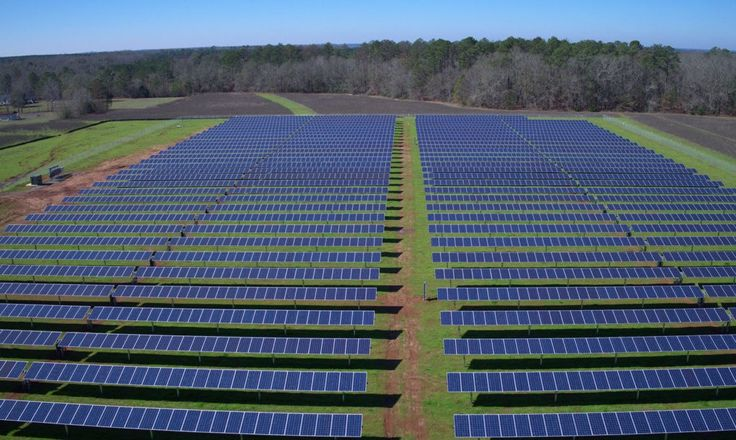 Former president Jimmy Carter and his wife Rosalynn recently unveiled a 1.3 megawatt solar power project at their Plains, Georgia farm.