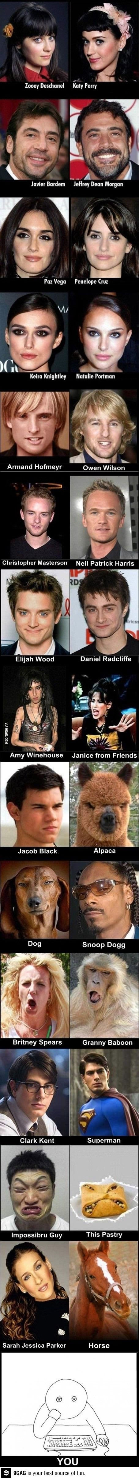 Extreme look alikes. I lost it at Taylor Lautner. And I was just like that LOL