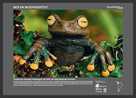 mooie gratis downloadbare posters i.v.m. milieu-educatie