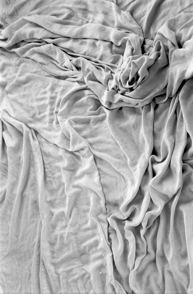It looks like a natural form - leaves, water, etc. Shows how man-made things can look like/represent natural forms. Trevor Triano bed sheet