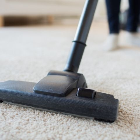 Bizon Businessforsale Of The Week Profitable Gta Retail Vacuumbusiness For Sale How To Clean Carpet Carpet Cleaning Company Professional Carpet Cleaning