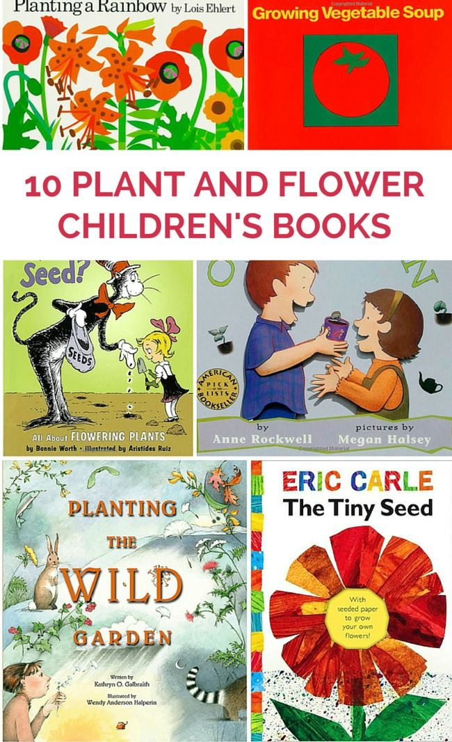 Children s books gardening vegetables garden ftempo for Children s books about gardening