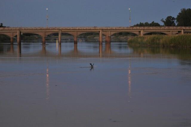 Bridge Upington