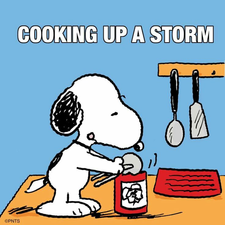 Chef Snoopy~