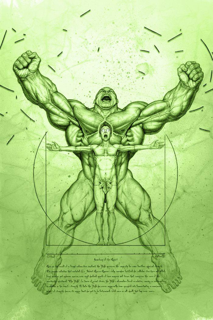Anatomie Hulkienne