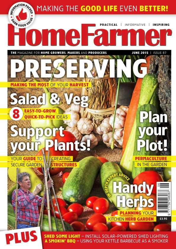 June 2015 Issue 87