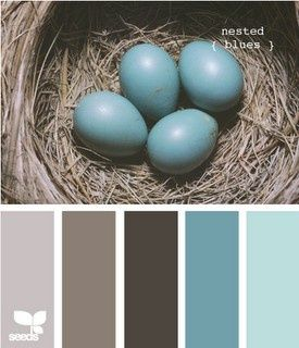 blue  brown color scheme for-the-home