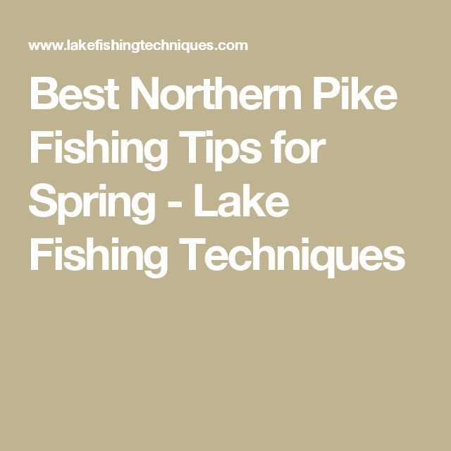Best Northern Pike Fishing Tips for Spring - Lake Fishing Techniques