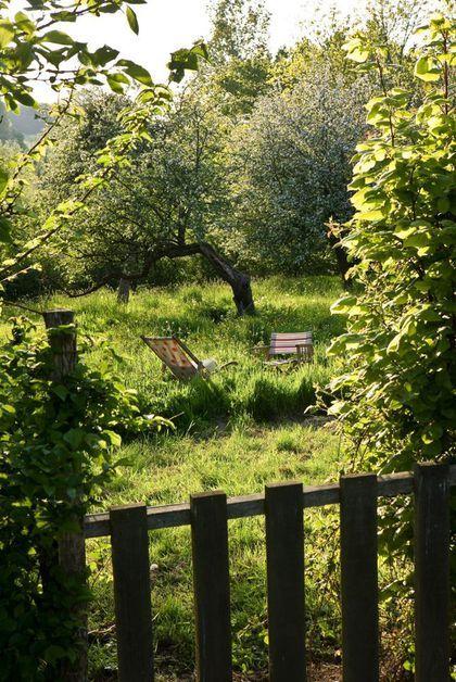 17 meilleures id es propos de jardins de campagne for Jardin sauvage
