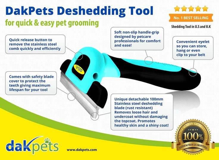 Best Dog Brushes For Bulldogs Fur Reviews