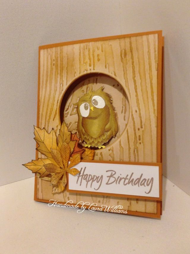 This Gorgeous card was made by Laura Williams using Hobby Arts stamp set Owls