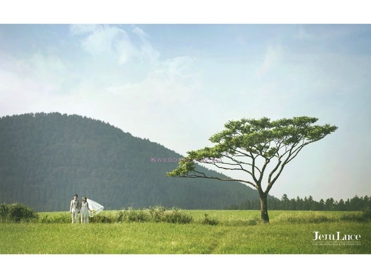 This is incredible! Unique work by Kwedding http://www.bridestory.com.sg/kwedding/projects/korean-pre-wedding-photography-jeju-outdoor